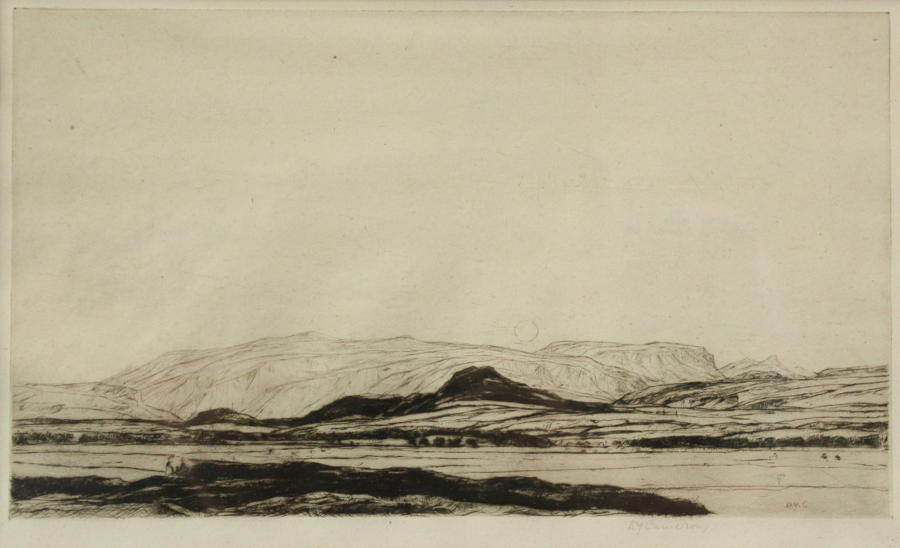 Sir David Young Cameron